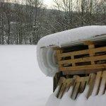 SchneeBild
